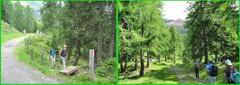 omhoog richting Ochsnerhütte