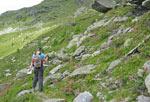 de Alpenrose overheerst