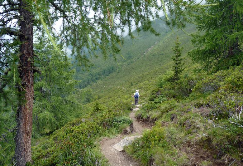 en weer tussen de Alpenrosen door