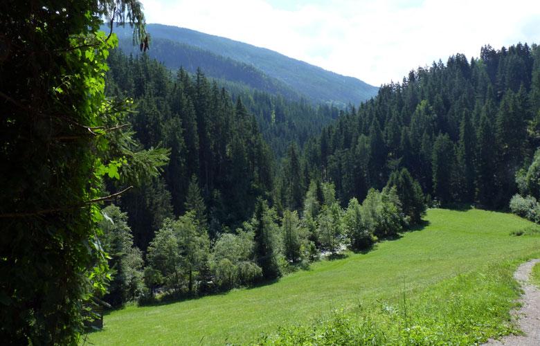 een laatste blik op de Pitzbach