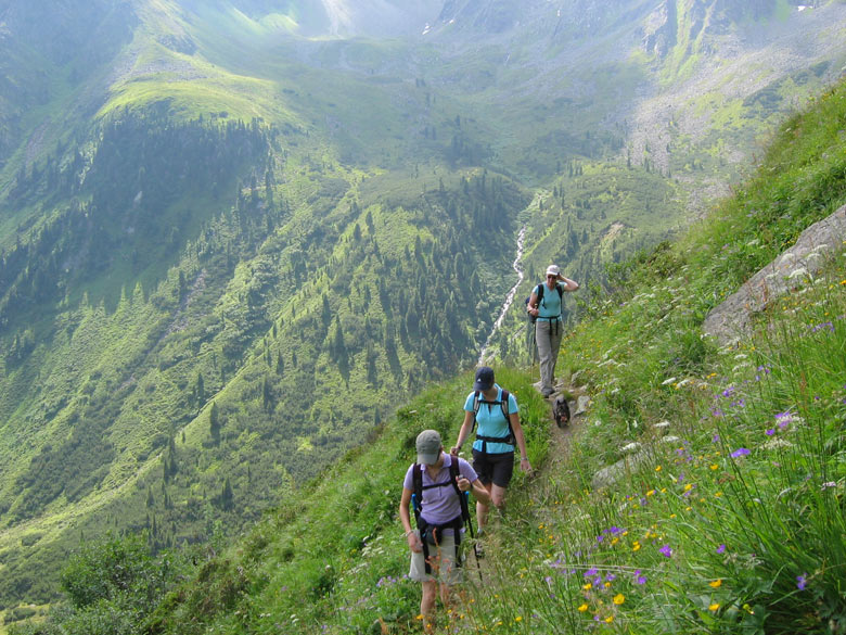 de Alpenbloemen vragen steeds meer aandacht