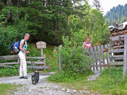 de Steig komt uit op de Forstweg bij een houten hek