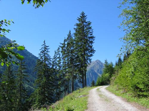 geleidelijk omhoog over een lang recht stuk Forstweg