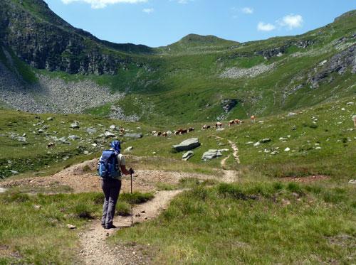 een heerlijk vlak pad door het dal