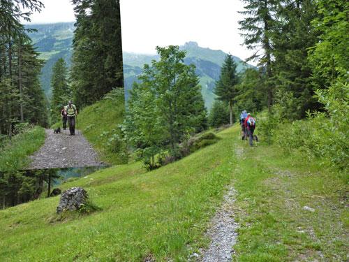 over de Alm achter het Gasthof, daarna een lange steile klim naar de Gadenalpe