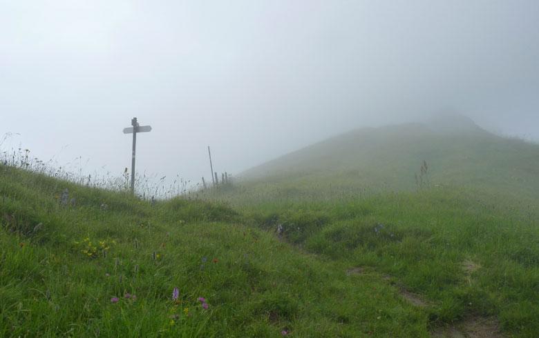 dan eindelijk zien we het wegkruis op het hoogste punt van de Sattel. We laten ons onder het bord in het gras vallen