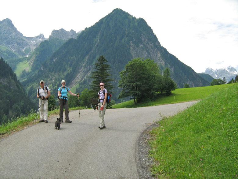 eenmaal uit het bos is er een prachtig uitzicht over de Alpenweiden
