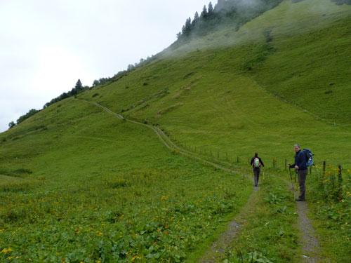 een Forstweg over de berghelling als start van de wandeling