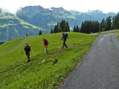 via smalle paden snijden we een stuk Forstweg af