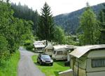overwegend groene camping