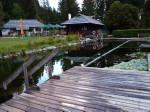 het fraaie Biotop natuurzwembad