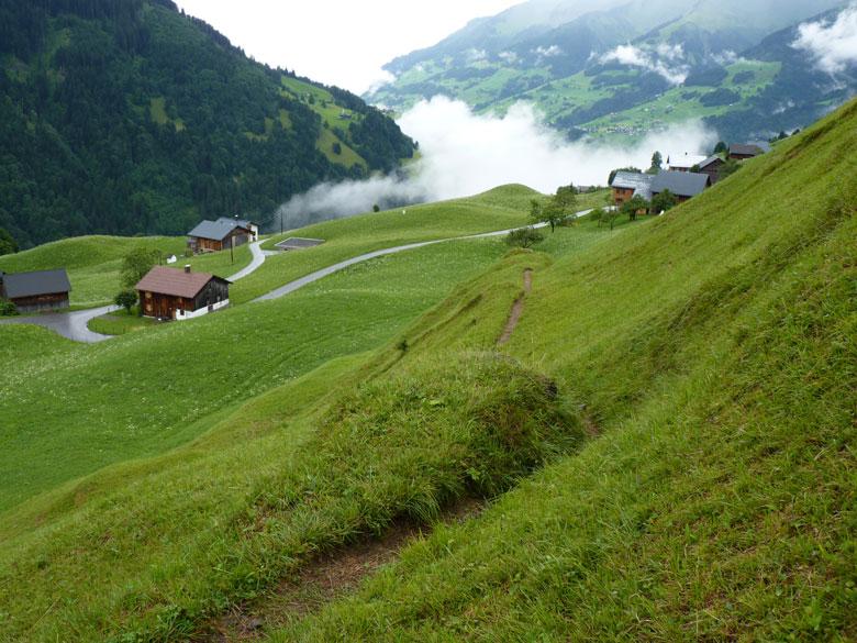 grappig paadje over de pas gemaaide Alpenweiden