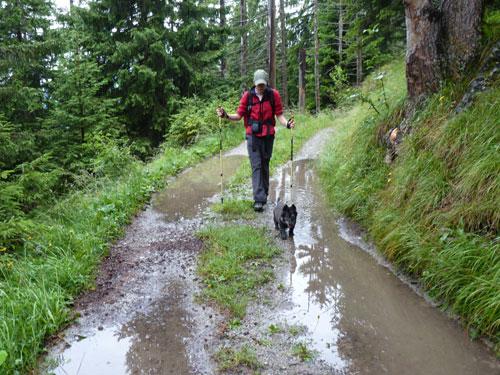 op de vlakke stukken is veel regenwater blijven staan