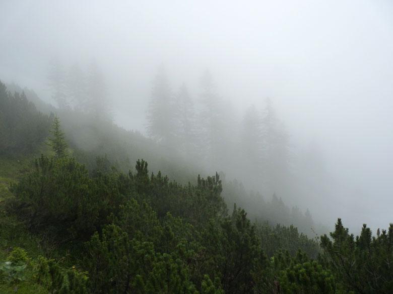 de lage bewolking haalt ons in zodat we even later in dichte mist lopen
