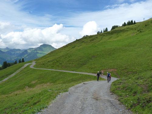 de brede weg brengt ons in een paar minuten terug naar de Unterpartnomalpe
