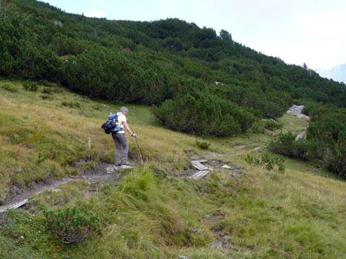 terug via een vlak pad door Alpenden bosjes