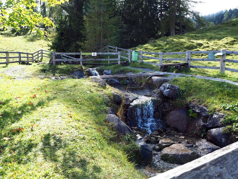 bij de Ronaalpe, met terras en speeltuintje en Naturkneippstelle