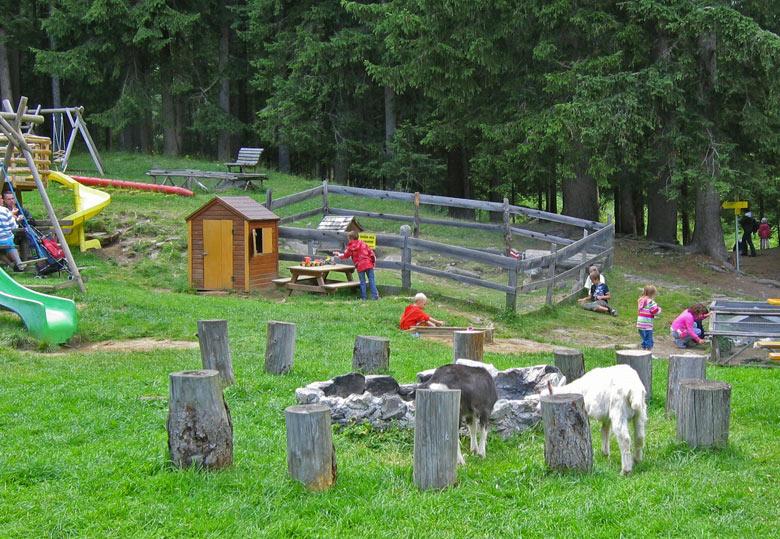 Kinderboerderij en speeltuin bij de hut
