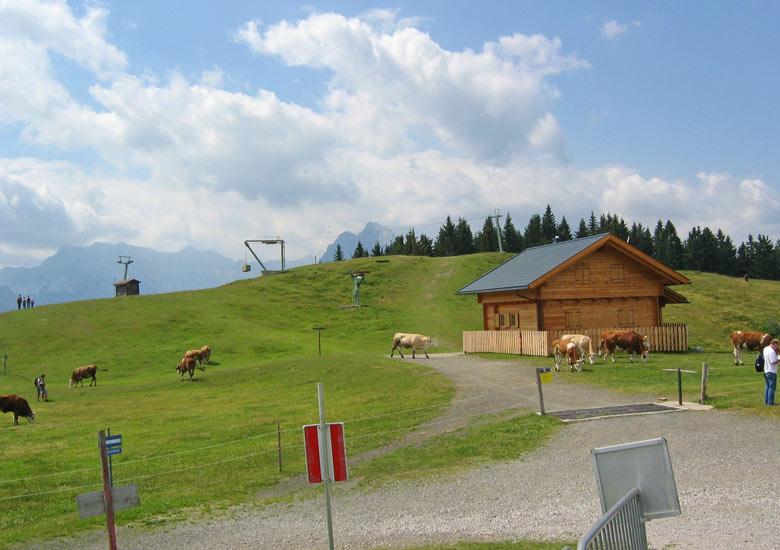 Alpenwei bij het station