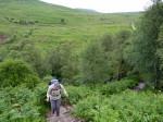 prachtig pad door de heuvels