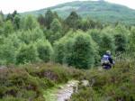 in de middag droogt het op en zien we het landschap beetje bij beetje veranderen in lage bebossing, heide en bergen
