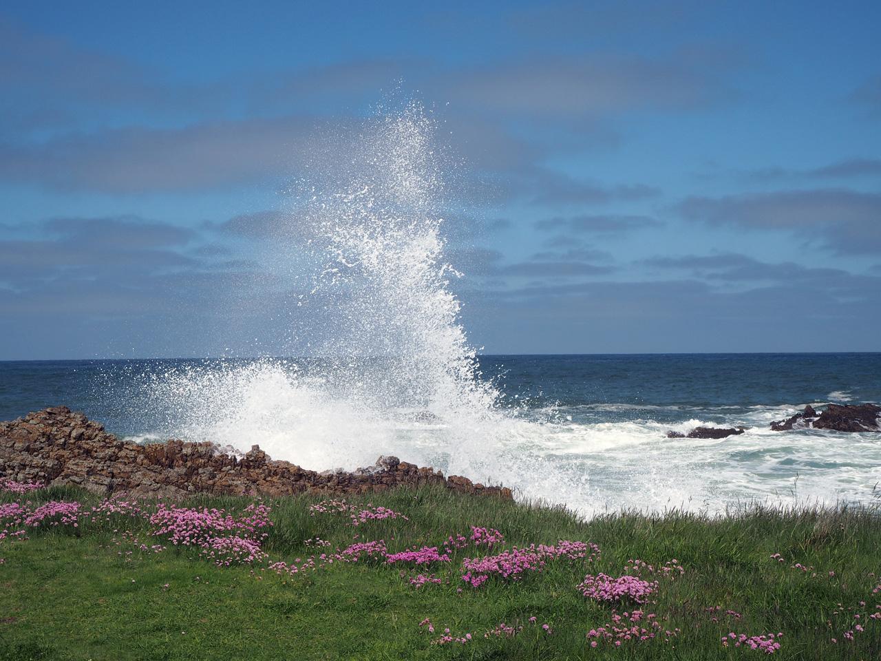 de golven breken op de kust