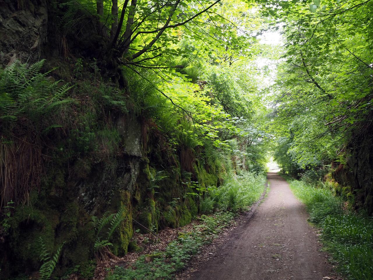 spoorweg pad naar Dufftown