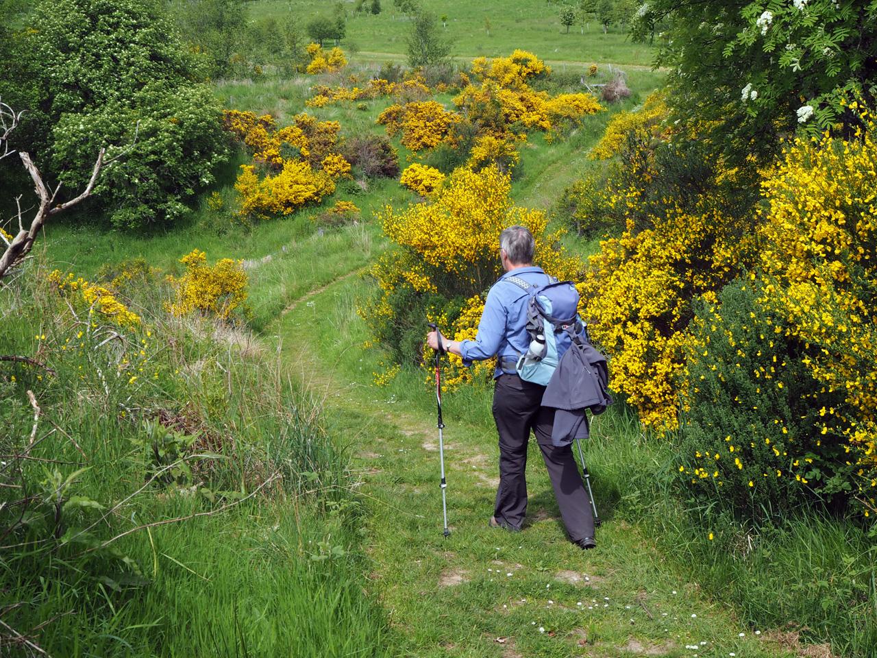 schitterende route de heuvels in boven Dufftown