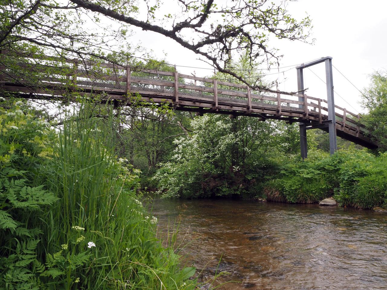 doorwaden of toch maar via de brug