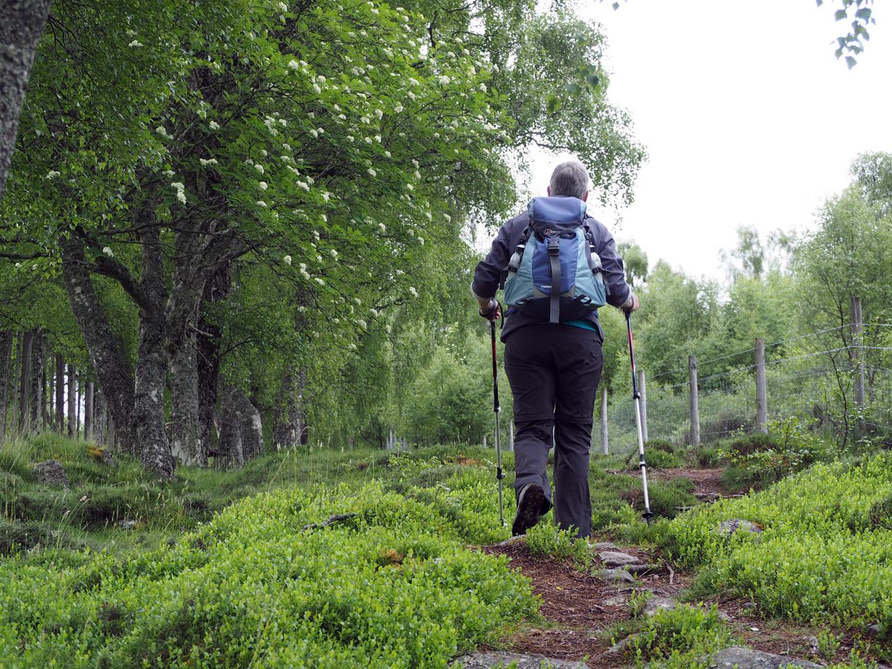 vanuit het Spey dal trekken we de heuvels in