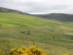 Cairngorms, een onvoorstelbaar mooie omgeving