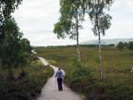 fraai pad door het natuurgebied