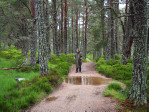 het Cairngorm National Park