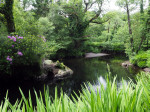park rond de Glengarriff River