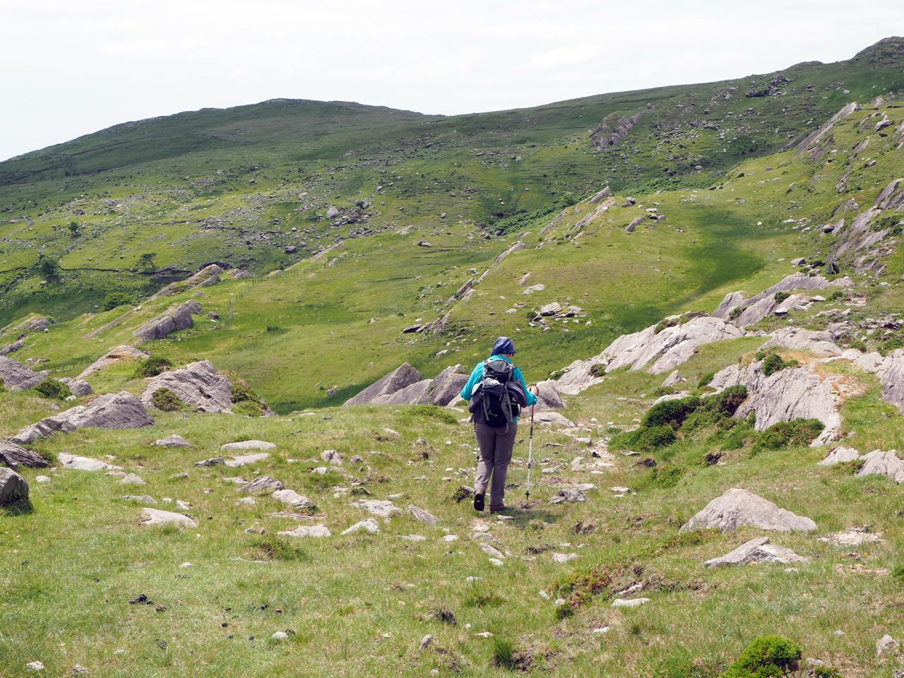 fraaie natuur op de bergehellingen
