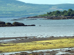Bantry Bay baai bij Adrigole
