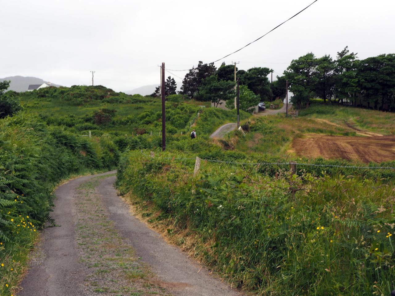 de hoofdweg op het eiland