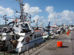 een drukke vissershaven