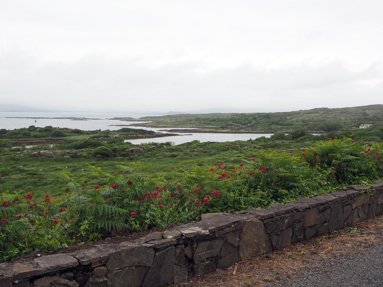 vanaf de kustweg uitzicht op de baai
