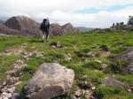 rotsen, dichte struiken en manshoge varens bij Reenkilla