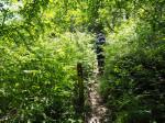 weer even onverharde paden